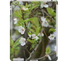 FIRST BLOSSOMS iPad Case/Skin