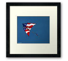 Flying Patriot  Framed Print