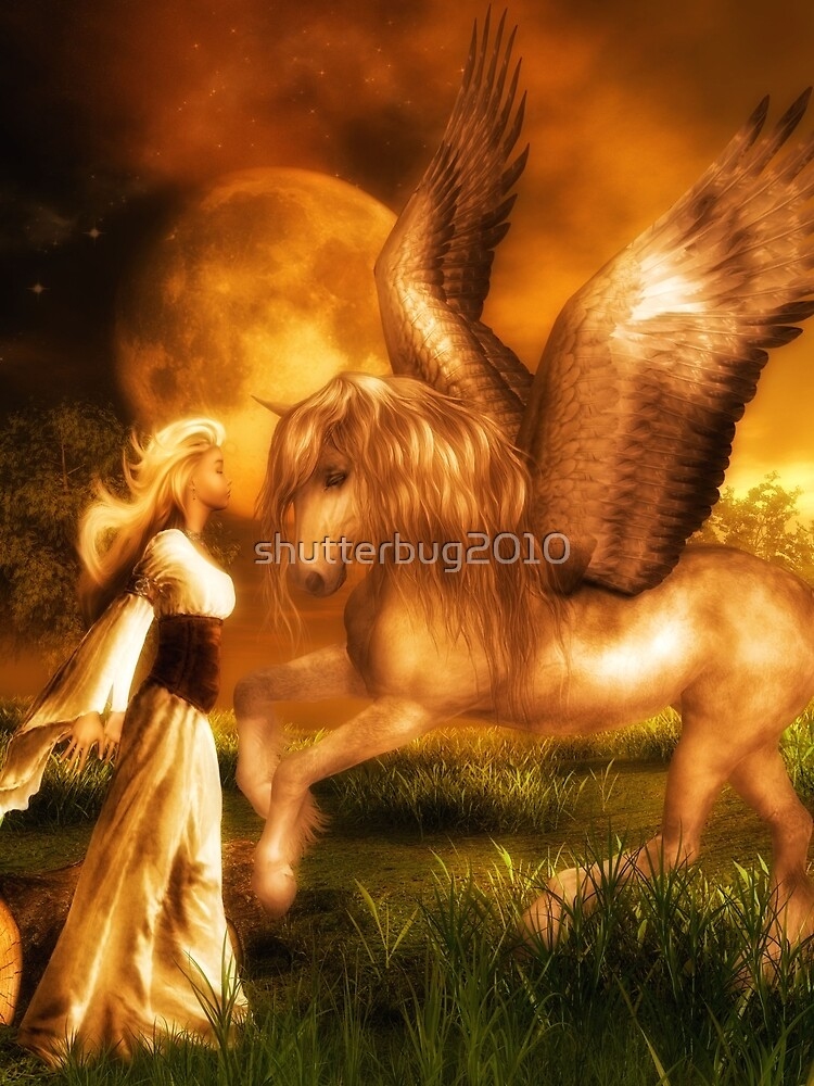 Pegasus and the Maiden by shutterbug2010