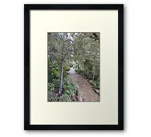 Back to the past. Framed Print