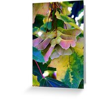 Fall Leaves 2 (Maple) Greeting Card