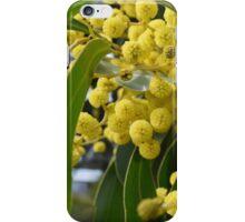 Yellow Wattle iPhone Case/Skin