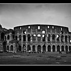 il colosseo by Adriana Glackin