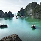 Halong Bay by Luke Griffin