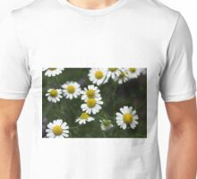 Echte Kamille {Matricaria chamomilla} Unisex T-Shirt