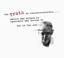 The Truth is Incontrovertible by Juilee  Pryor