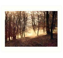 Winter Morning, Frost Rising Art Print