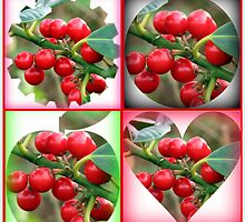 Red Berries Fancy Shapes Collage by BlueMoonRose