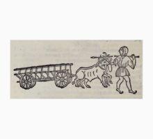 Hic Codex Auienii Continent Epigrama Astronomy Rufius Festivus Avenius 1488 Astronomy Illustrations 0136 Constellations One Piece - Short Sleeve