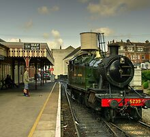 Goliath at Paignton  by Rob Hawkins