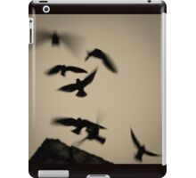 Chimney Swifts Going Home iPad Case/Skin