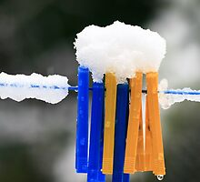 Pegs in the snow by Paul Pasco