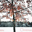 Happy Christmas by Anne Staub