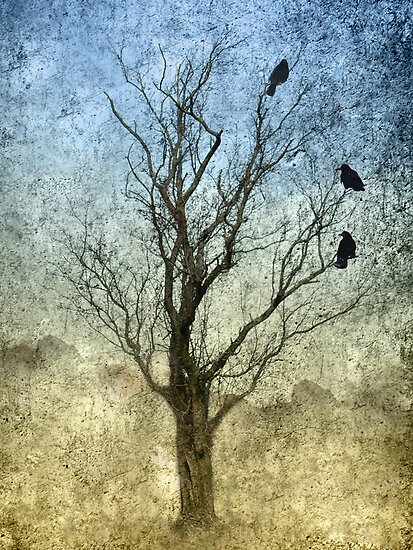 Three Crows by Declan Carr
