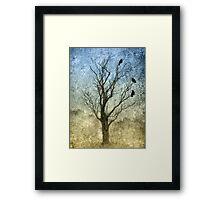 Three Crows Framed Print