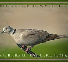 Peace: a beautiful word in any language by Bonnie T.  Barry