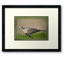 Peace: a beautiful word in any language Framed Print