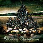 Christmas on Georgian Bay Card... by ©Janis Zroback