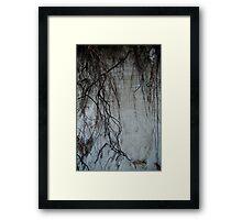 Beach Summit Framed Print