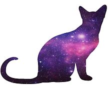 Galaxy Cat by JustAnotherVlog