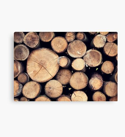 Stack 'Em High Canvas Print