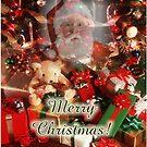 Merry Christmas to you too by ZeeZeeshots