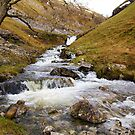 Buckden Beck by Andrew Leighton