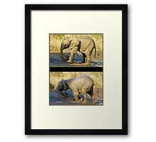 HAD ENOUGH OF THIS MUDBATH, OOPS! SERIES: # UPCLOSE AND PERSONAL WITH ELEPHANTS IN MAPUNGUBWE! Framed Print