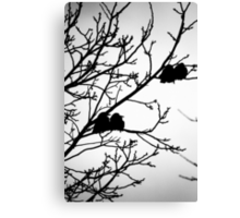 OnePhotoPerDay Series: 346 by L. Canvas Print