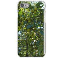 unripe apples iPhone Case/Skin