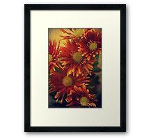 By The Light (2).... Framed Print