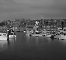 WHITBY'S BOAT HARBOUR.  by andysax