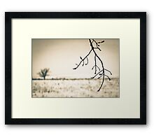 OnePhotoPerDay Series: 349 by L. Framed Print