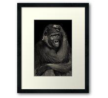 Gorilla Blues Framed Print