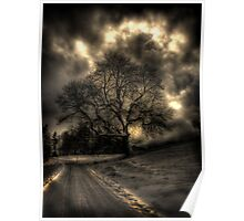 My Favourite Tree - The Haunting Poster