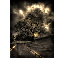 My Favourite Tree - The Haunting Photographic Print
