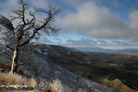 Scene from Mesa Verde National Park, Colorado by sccaldwell