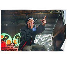 Joey Bada$$ at Falls Festival Poster