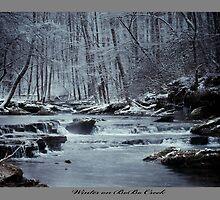 Winter on BoBo Creek by Ray Wells