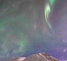 Arctic Aurora Borealis in December by Frank Olsen
