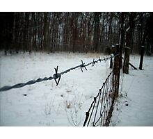 Cold Wire Photographic Print