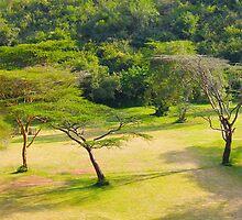 Masai Lodge Park, KENYA by Atanas Bozhikov Nasko