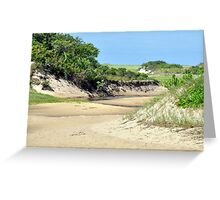 Marshy Cape Cod Greeting Card