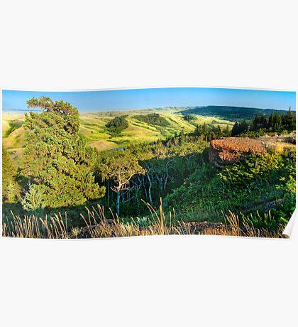 Cypress Hills Interprovincial Park Lookout Poster