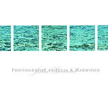 The Sea ~ Signature Series by Julia Harwood