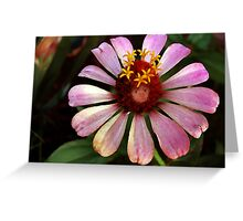 Queen of the Flower Fairy's 2 Greeting Card