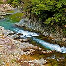 Mountain stream, Takayama, Japan Alps. by johnrf