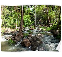 Cedar Creek - Tamborine Mountain Caravan and Camping - Gold Coast - Queensland Poster