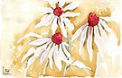 Daisies in the Rain by Maree  Clarkson