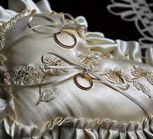 Wedding Rings by darios84